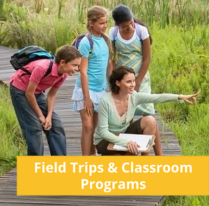 Field trips and classroom programs